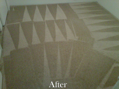 Cleaned Carpet with Pattern